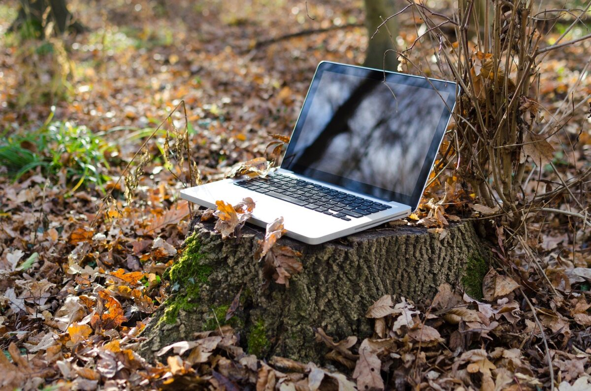 Laptop in a forest