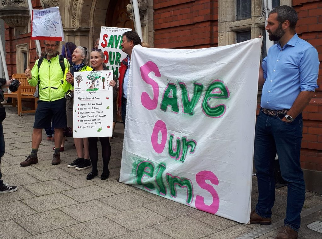 Protest at Tynwald to save the elms at St Marks