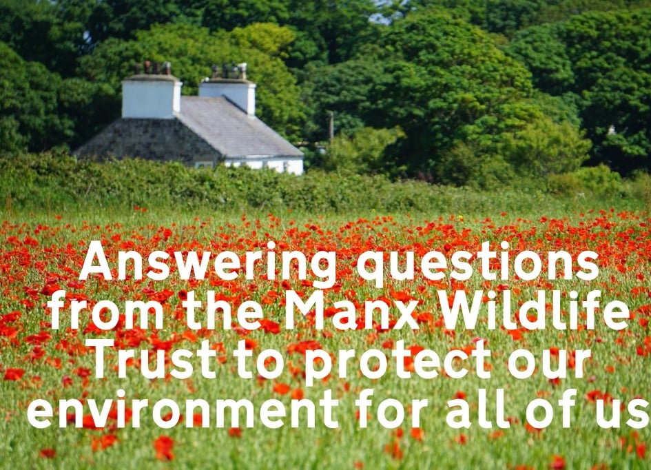 Answering questions from the Manx Wildlife Trust to protect our environment for all of us